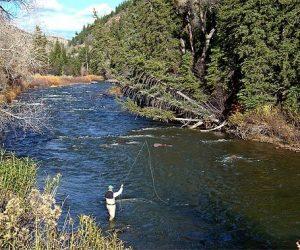 Eagle River Fishing