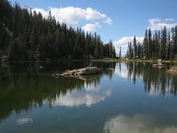 Nolan-Lake
