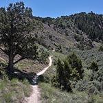 tick alley hike Eagle CO