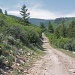 abrams ridge bike Eagle CO