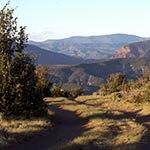 Abrams Ridge